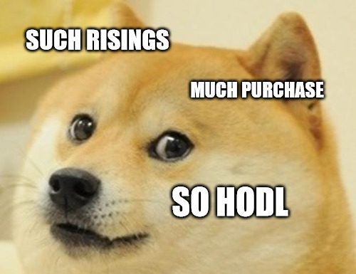 bitcoin crash doge look