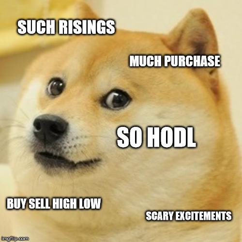 bitcoin crash doge look
